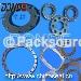 Flange gasket/valve gasket/spring gasket/serrated gasket