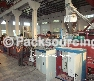 Wood-plastic Plate Extrusion Line