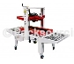 T100 AUTOMATIC CARTON SEALER